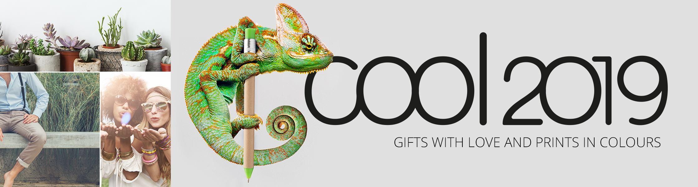 Dai un'occhiata al nostro catalogo COOL 2019!