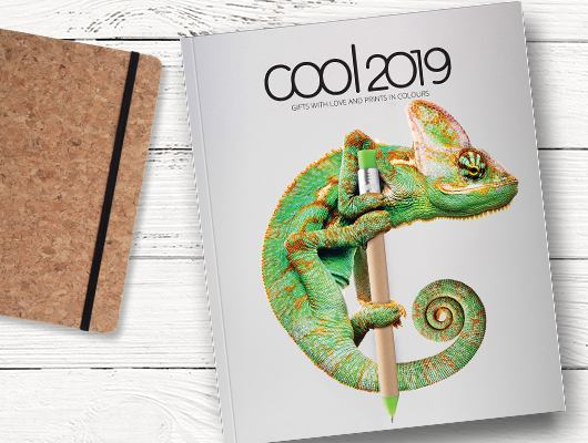 COOL 2019 catalogue